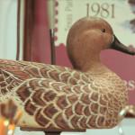 Decoys: A Duckumentary